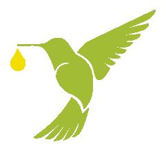 Associação Amigos de Iracambi