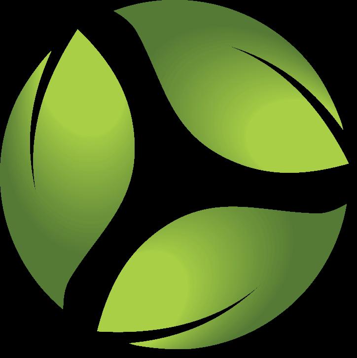 IEP - Instituto de Educação Portal