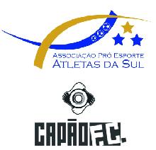 Associação Pró-Esporte Atletas da Sul (APEAS)